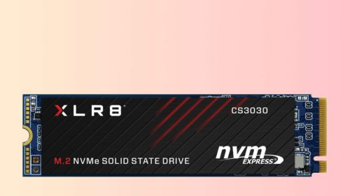 PNY XLR8 CS3030 NVMe SSD review: Cheap and exceptionally fast for everyday chores