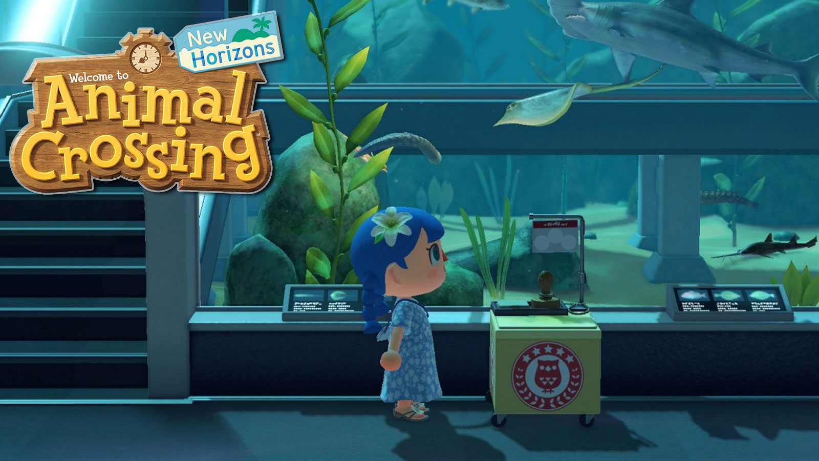 Animal Crossing: New Horizons Stamp Rally – All you need to know about the Museum Event