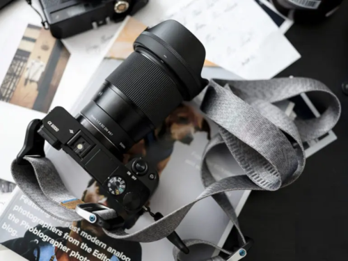 Get the Most Out of Your Sony APS-C Camera With These Great Lenses