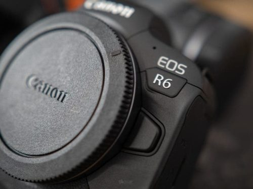 The R6 Could Be a Sleeper Camera: Canon EOS R6 First Impressions