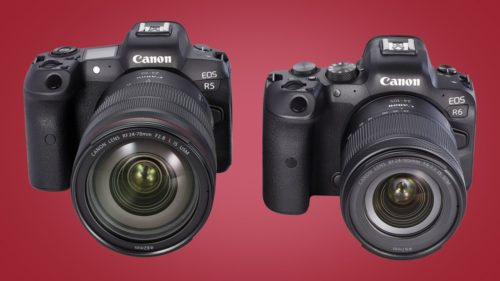 Canon EOS R5 vs. R6: What's the difference?