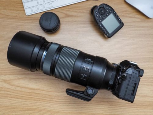 Sharp and Stable: Olympus 100-400mm F5-6.3 IS First Impressions
