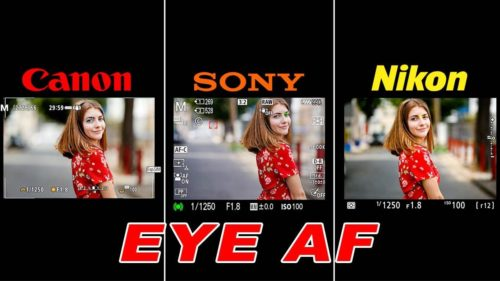 Canon EOS R5 vs Sony a7R IV vs Nikon Z7 Eye AF Comparison