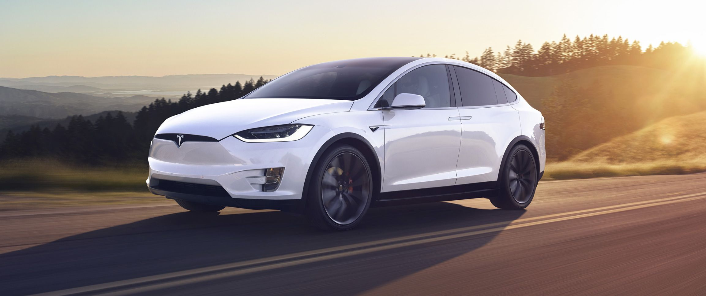 Model X: How Much Tesla's Most Expensive Car Costs & What Makes It Special
