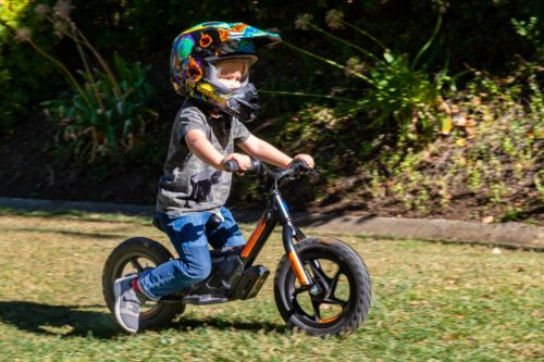 HARLEY-DAVIDSON IRONE12 REVIEW (14 FAST FACTS)