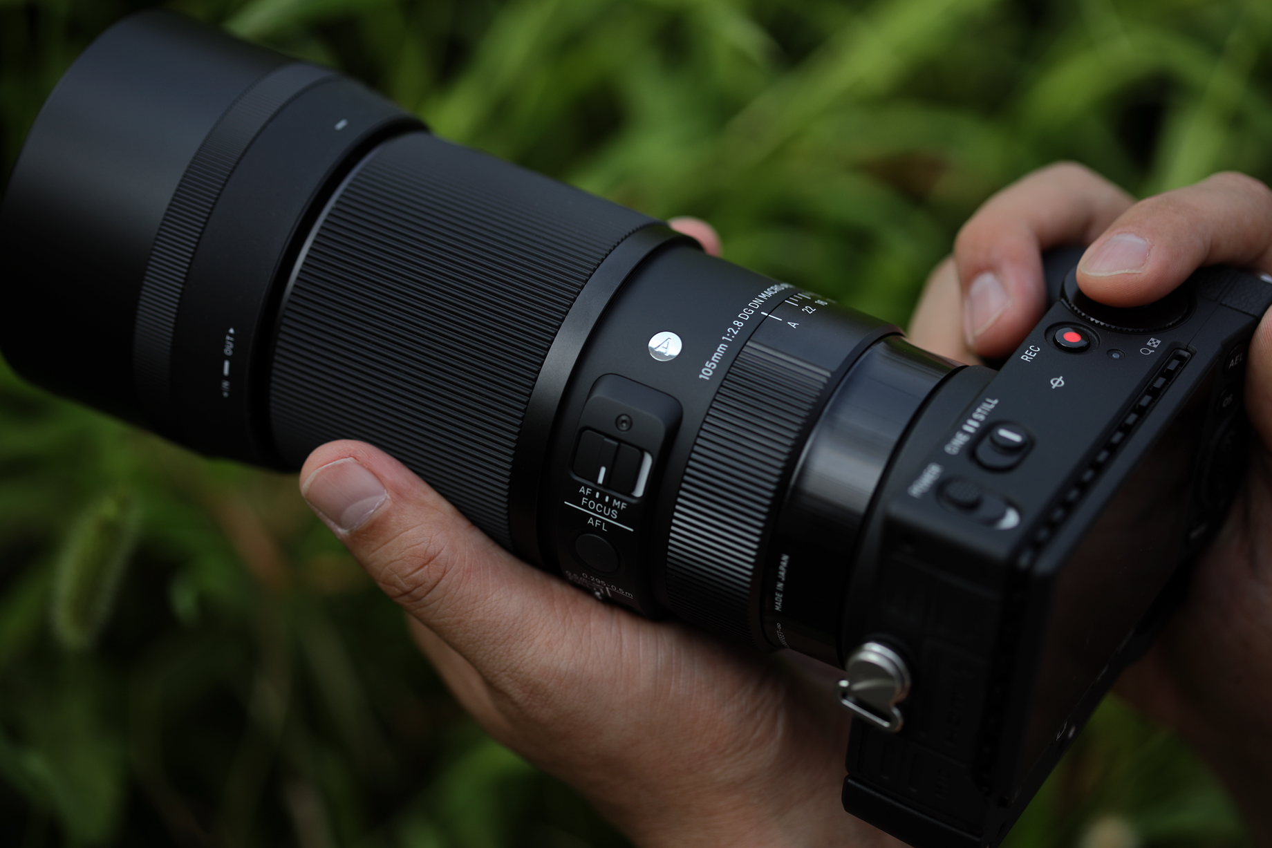 Sigma 105mm F2.8 DG DN Macro Art Review