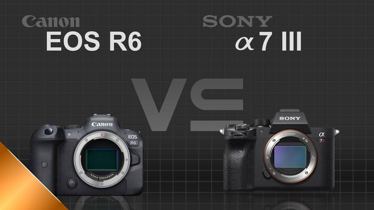 Canon EOS R6 vs Sony A7 III