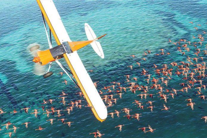 Microsoft Flight Simulator's Next Generation