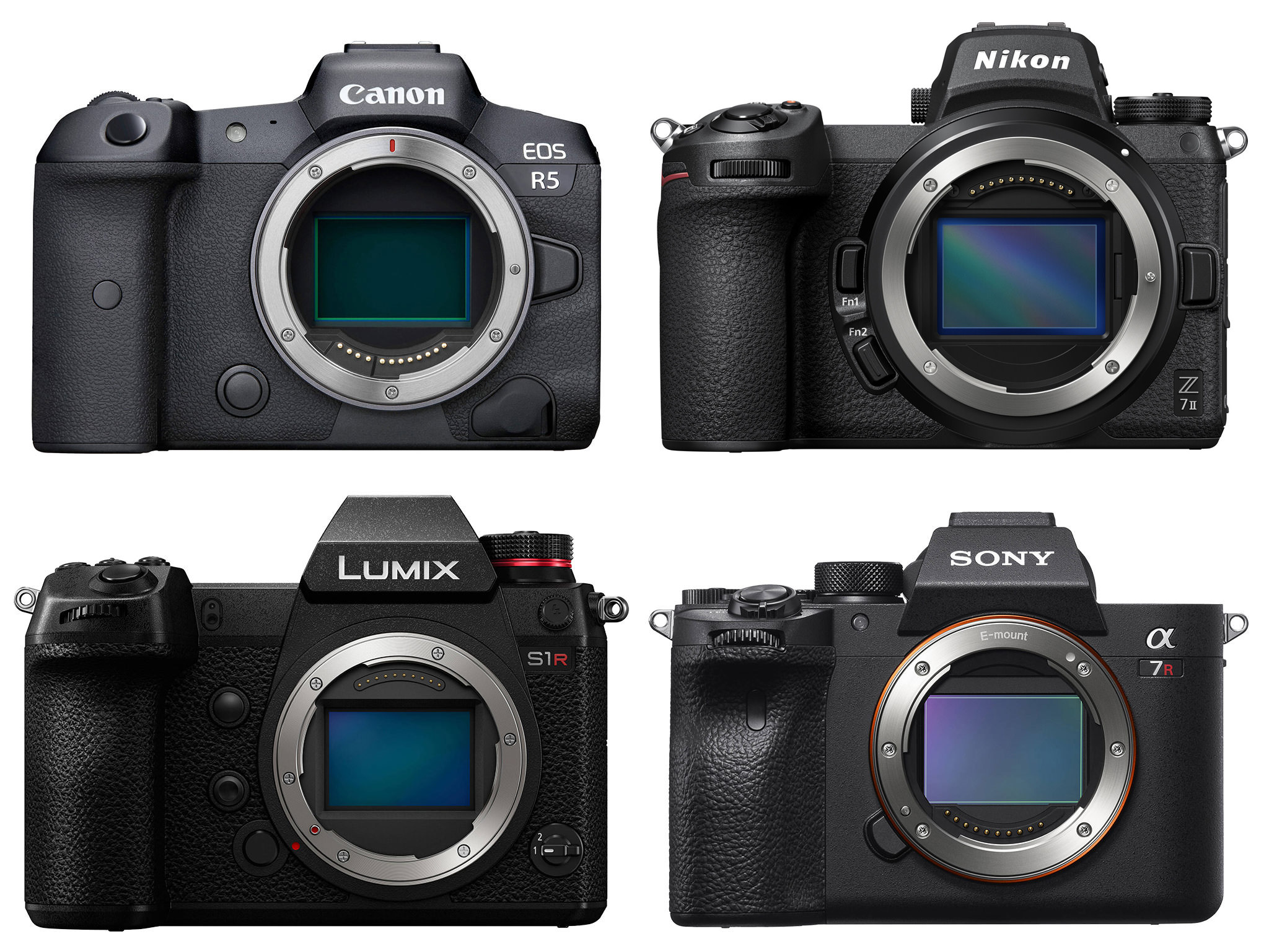 High Resolution Mirrorless Comparison : Canon EOS R5, Sony a7R IV, Nikon Z7 II, Panasonic S1R
