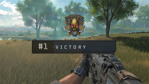Call of Duty: Black Ops 4: The best guns in Blackout