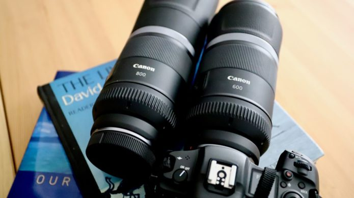 Canon RF 600mm and 800mm f/11: are these fixed-aperture telephotos worth it?
