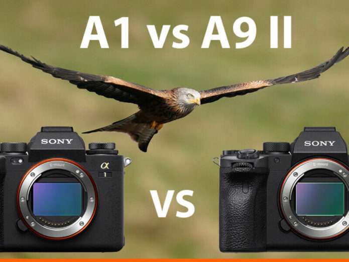 Sony A1 vs A9 II – The 10 Main Differences