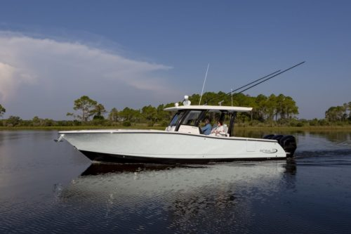 Robalo R360 First Glance