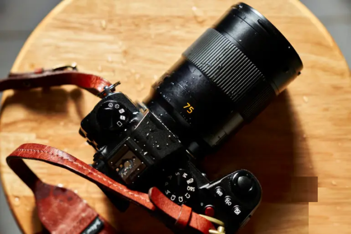 The Cost of Being Different. Leica 75mm F2 SL Review