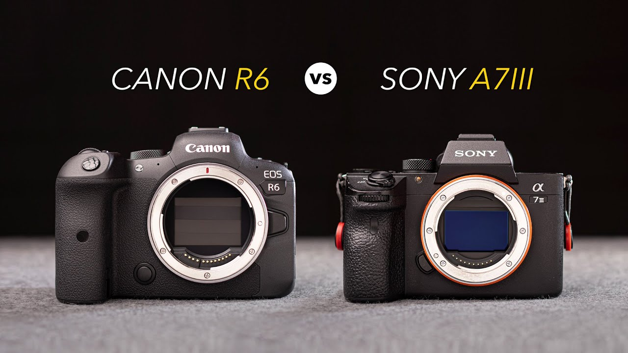 Canon EOS R6 vs Sony A7 III – The 10 Main Differences and Full Comparison