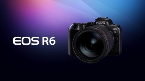 Best Lenses for Canon EOS R6