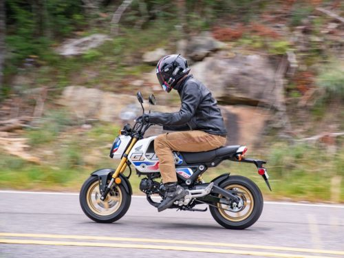 2022 Honda Grom First Ride