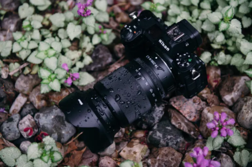 Nikon Z 24-200mm F4-6.3 VR Review: Fantastic Zoom, Limited Distortion