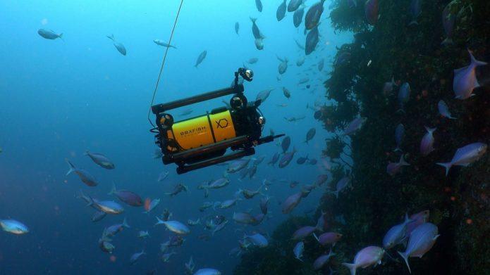 Boxfish Luna underwater drone