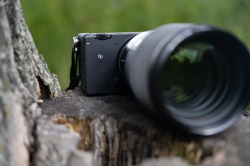 A Simple Little Box That Shoots Vibrant Photos: Sigma Fp L Review