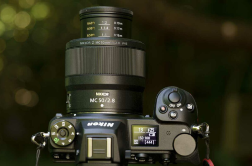 Nikon Z MC 50mm f/2.8 Hands-on Review: Is this compact macro lens as good as the 105mm f/2.8?