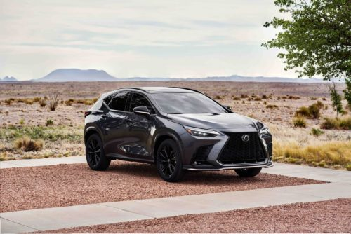 2022 Lexus NX First Drive Review: Poise, Power, Parsimony