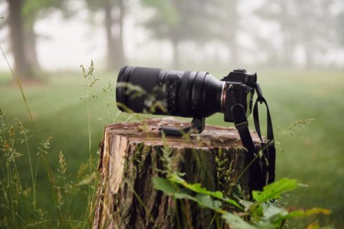 3 Sony E Mount Lenses That Survived the Great Outdoors