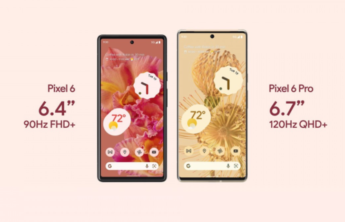 Weekly poll: Pixel 6 series is going on sale next week, who is getting one?